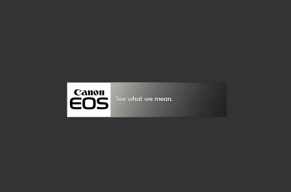canon see what we mean